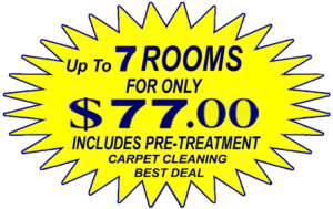 chandler carpet cleaning