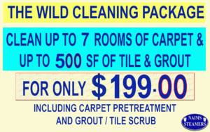 carpet cleaners in chandler az