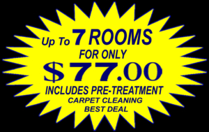 Chandler Carpet Cleaners Up To 7 Rooms For 77 00 No Gimmicks